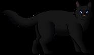 Nightfur.guerrero