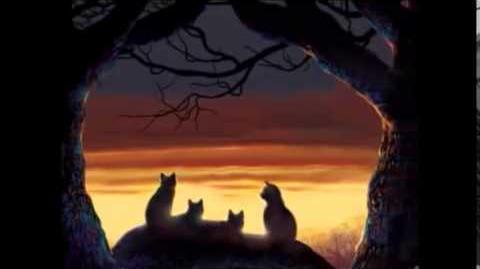 Gatos guerreros video oficial Sub español