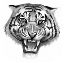 Logo-tigerclan.png
