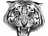 Clan del Tigre (Mitológico)