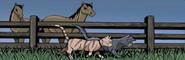 Graystripe's Adventure-Cercado de los caballos