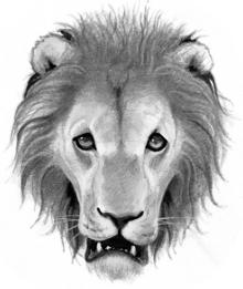 Logo-lionclan.png