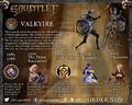 Valkyrie Infographic 2.jpg