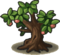 Fruit Tree.png