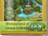 Wonderland of Nature
