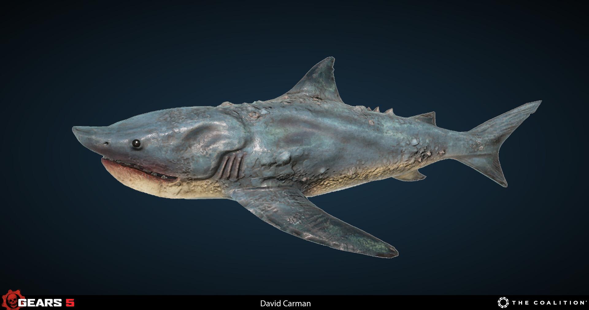 Serano Shark