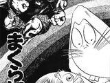 Makura-Gaeshi (história)