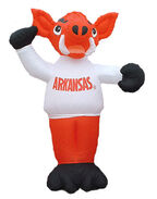 University airblowns collection-Arkansas