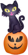 5.5 ft. Airblown Inflatable Cat On Pumpkin