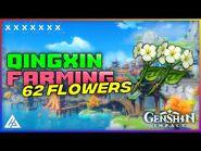 62 QINGXIN FLOWERS - ROUTE GUIDE - GENSHIN IMPACT - CG GAMES
