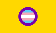 Trans-Intersex-Flag-Higher-Quality