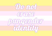 Do-not-erase-pangender-identity