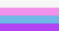 The Cis-genderless Flag.webp