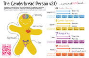 Genderbread-2.1 from itspronouncedmetrosexualdotcom