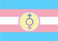 Trans-Intersexual Flag