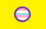 Trans-Intersex Flag