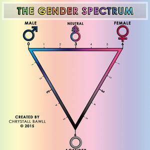 The gender spectrum scale by chrystall bawll-d9d0eiu.jpg