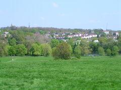 Hampstead Heath 7.JPG
