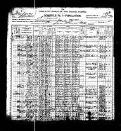 1900 census Carr Norton
