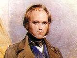 Darwin–Wedgwood family