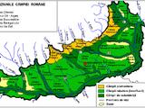 Romanian Plain