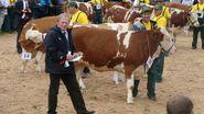 The autumn cattle exhibition in Rudawka Rymanowska 2008