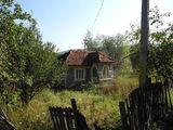 Balta Tocila, Buzău