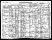1920 census KahrarPolling