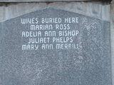 Juliett Ann Phelps (1839-1919)