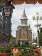 TimisoaraCatedrala