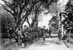 row of men with rifles