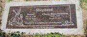 Sshepherd2019.jpg