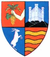 Interbelic Salaj County CoA