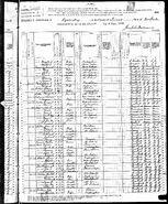 1880 census Lattin Puckett