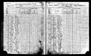 Catherine Creedon (1835-1914) Finn and Catherine Elizabeth Finn (1864-1918) in the 1895 New Jersey census