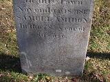 Samuel Amidon (1742-1819)