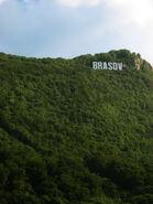 Brasov hollywood sign