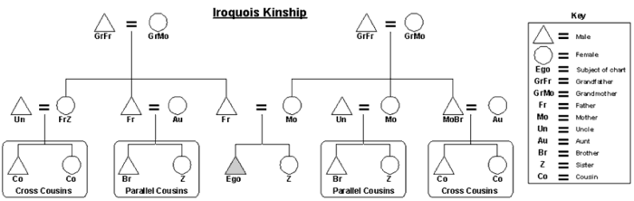 Graphic of the Iroquois kinship system