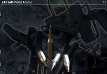 .243 Soft-Point Ammo.jpg