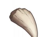 Необычный клык