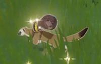 Enemy 500 Mora Weasel