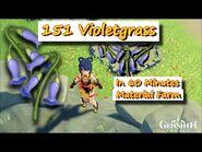 151 Violetgrass in 60 Minutes