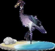 Wildlife Violet Ibis Archive