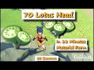 70 Lotus Head in 18 Minutes +10 Summon (Tartaglia-Childe Banner)