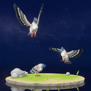 Wildlife Brightcrown Pigeon Archive