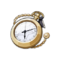 Item Instructor's Pocket Watch.png