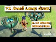 71 Small Lamp Grass in 13 Minutes - Genshin Impact