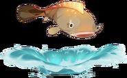 Wildlife Pufferfish Archive