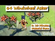 64 Windwheel Aster in 10 Minutes - Gensgin Impact