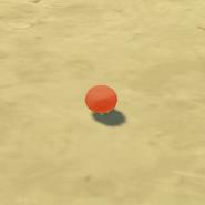 Item Tomato Wild